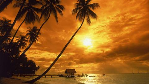 Tobago Packages